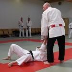 Jiu-Jitsu Lehrgang Bremerhaven 2015